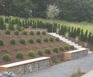 Garten kurz nach der Fertigstellung