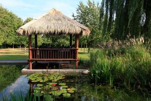 Ein Schwimmteich mit Pavillon.